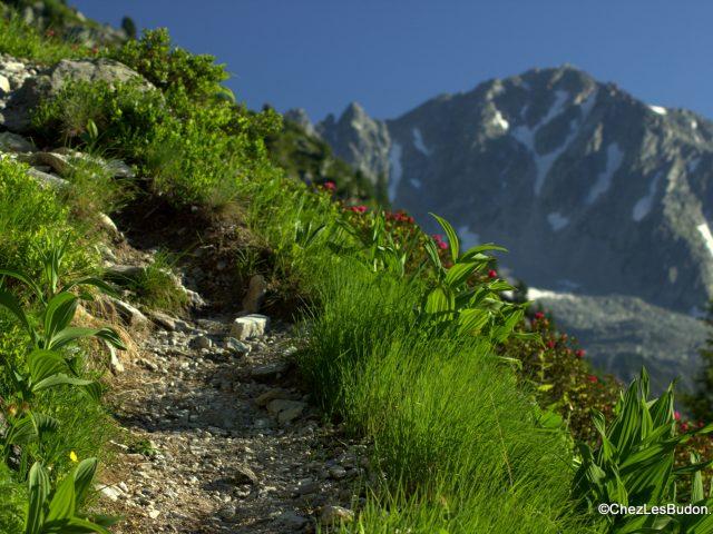 Pointe de Rognier (2341m) – Les Grand Moulins (2495m) – 2 jours