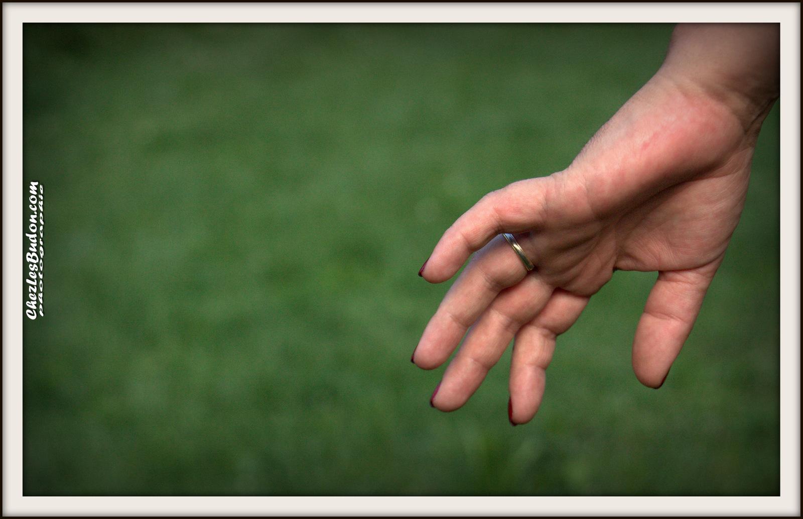 Les cinq doigts