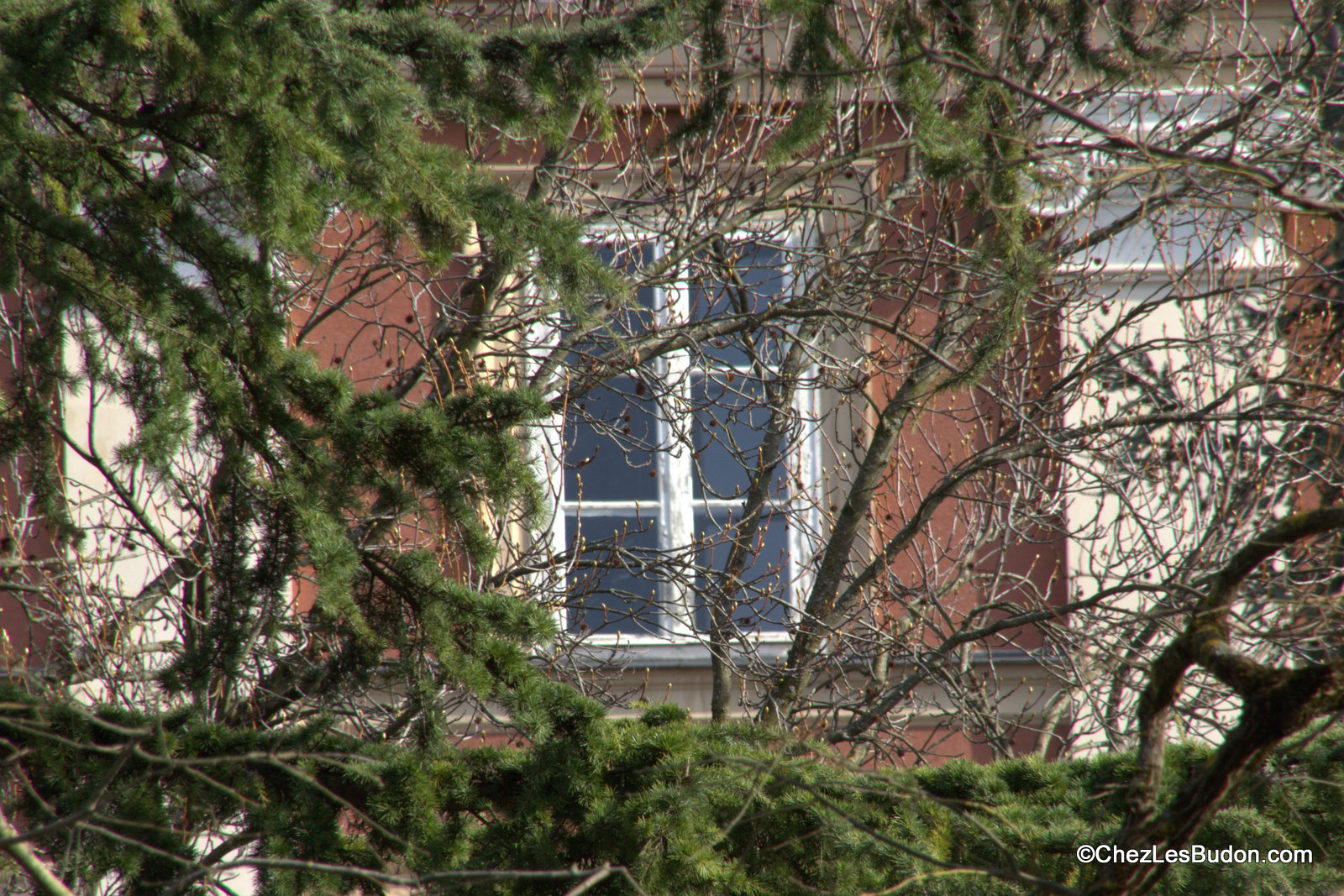 Fenêtre sur …